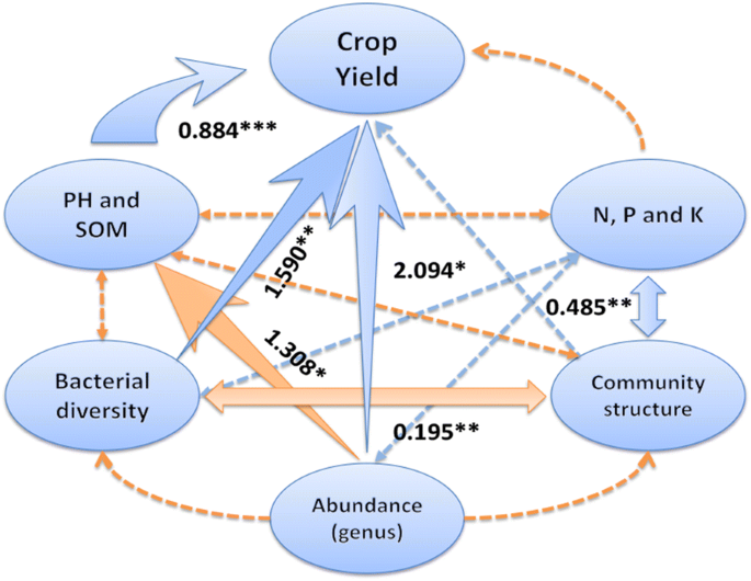 Environmental factors shaping the diversity of bacterial