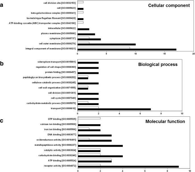 Functional characterization and proteomic analysis of lolA