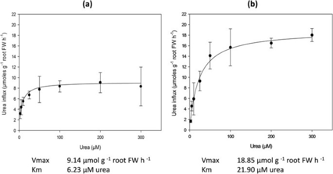 Isolation and functional characterization of a high affinity urea