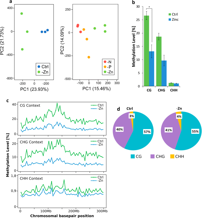 The transcriptome of zinc deficient maize roots and its