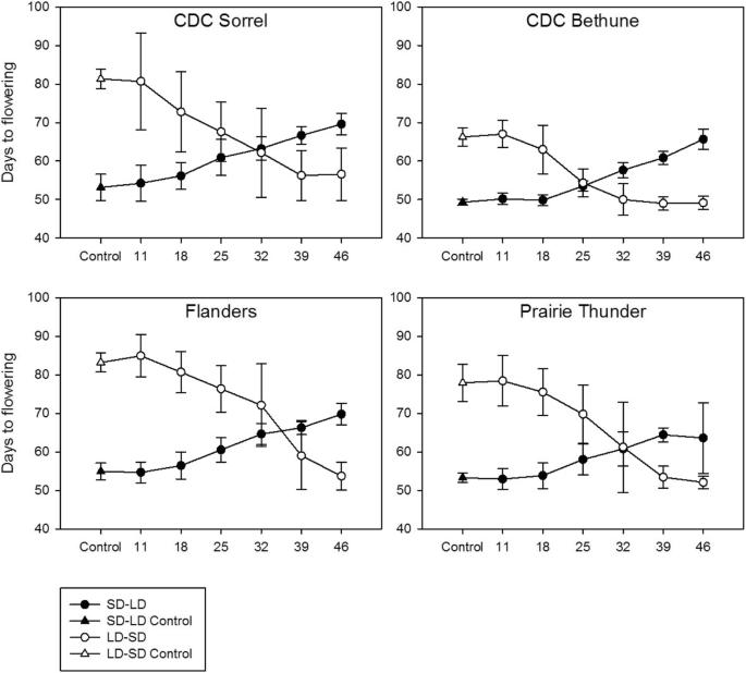 Photoperiod sensitivity of Canadian flax cultivars and 5-azacytidine
