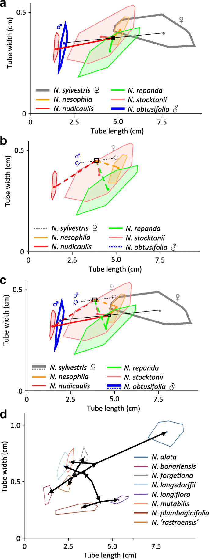 Early consequences of allopolyploidy alter floral evolution