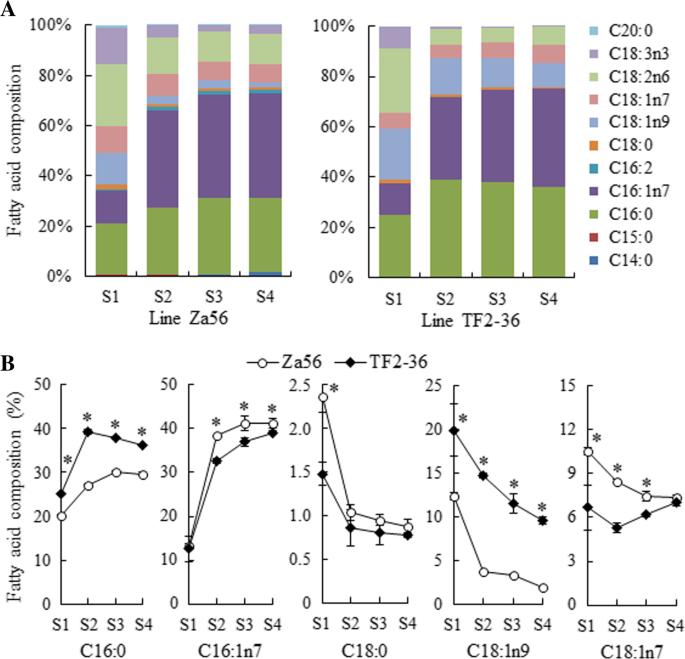 RNA-seq data reveals a coordinated regulation mechanism of