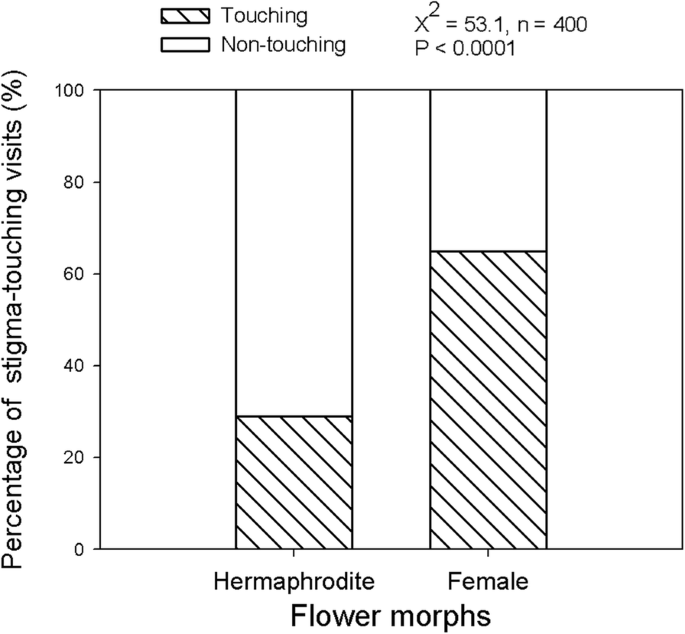 Sex-differential reproduction success and selection on