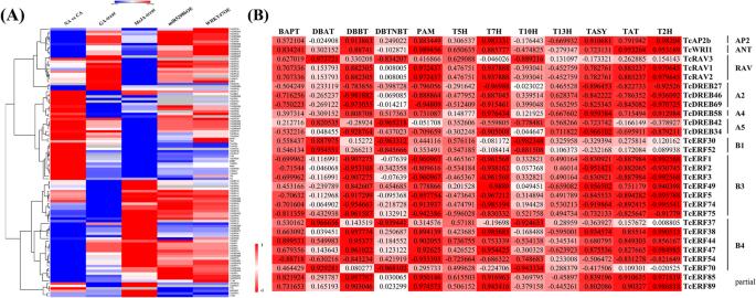 New different origins and evolutionary processes of AP2/EREBP ...