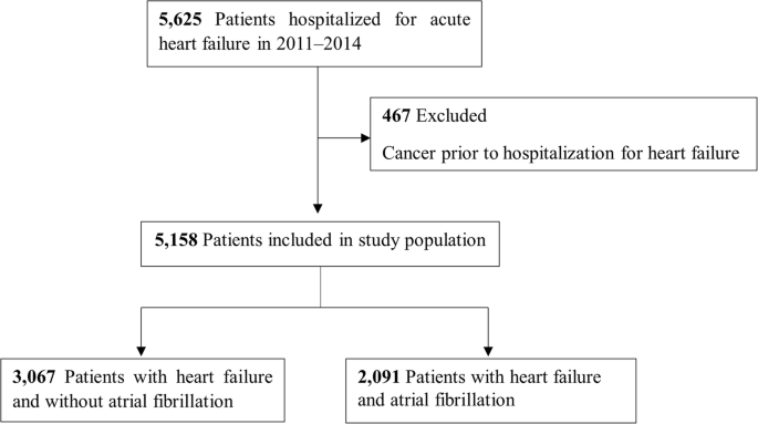 Predicting stroke and death in patients with heart failure using CHA
