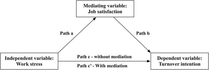 Job satisfaction, work stress, and turnover intentions among