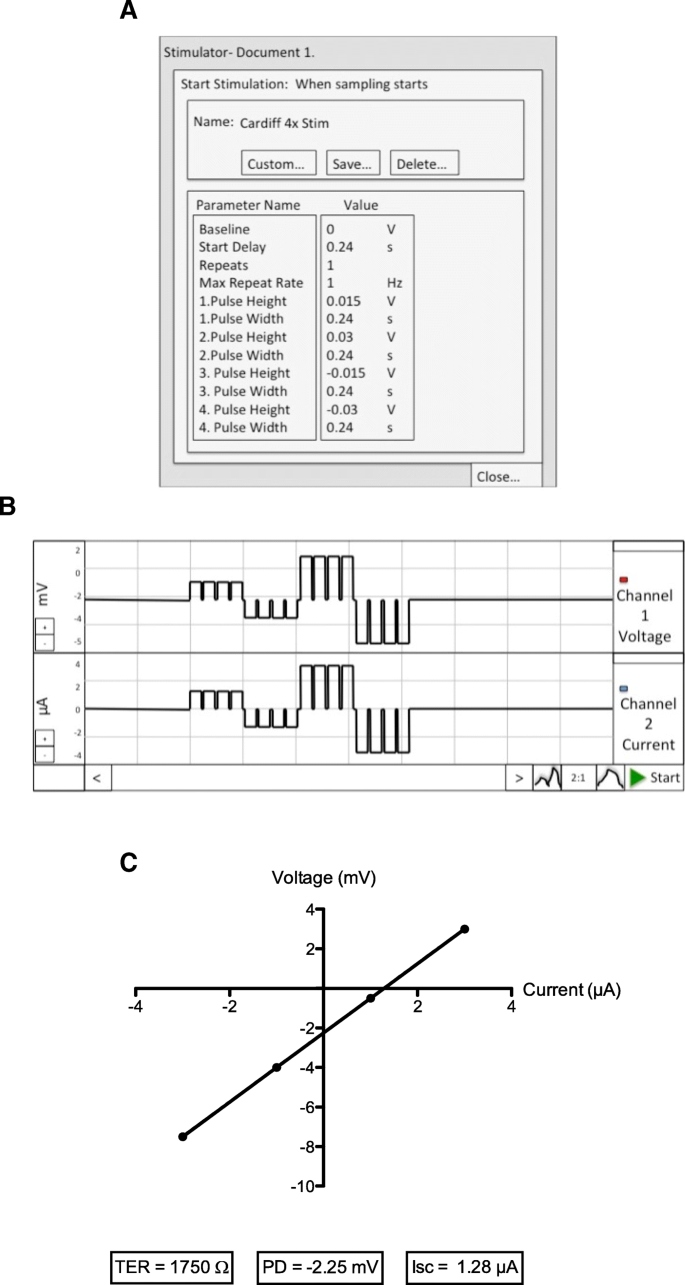The Ussing chamber system for measuring intestinal permeability in
