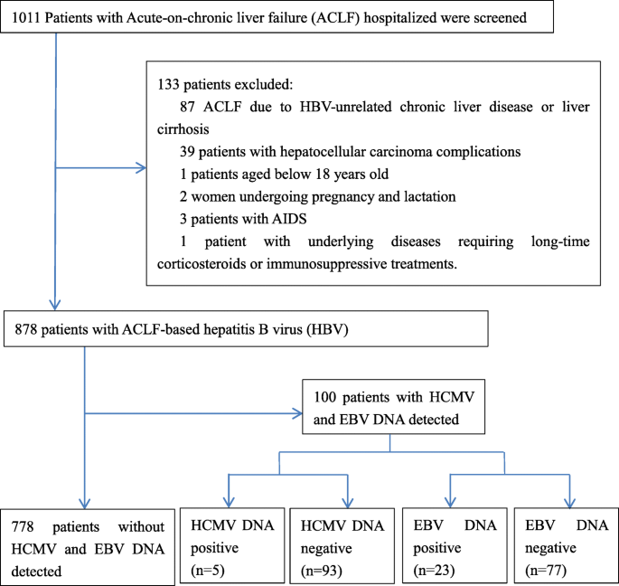 Human cytomegalovirus and Epstein-Barr virus infections