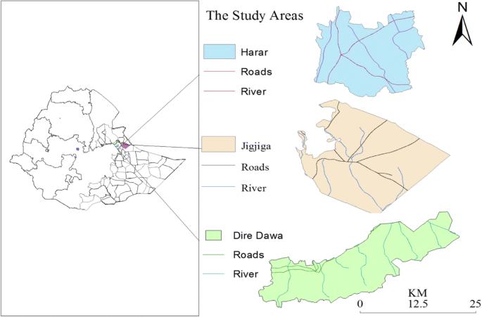 Bovine tuberculosis in eastern Ethiopia: prevalence, risk