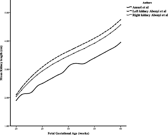 Sonographic estimation of gestational age from 20 to 40