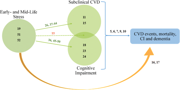 Effects of early- and mid-life stress on DNA methylation of