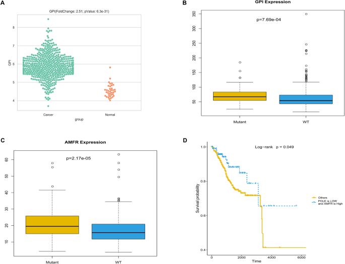 Pole Mutations Improve The Prognosis Of Endometrial Cancer Via Regulating Cellular Metabolism Through Amf Amfr Signal Transduction Bmc Medical Genetics Full Text