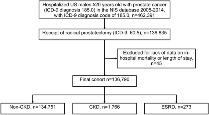 Post Surgical Outcomes Of Patients With Chronic Kidney Disease And End Stage Renal Disease Undergoing Radical Prostatectomy 10 Year Results From The Us National Inpatient Sample Bmc Nephrology Full Text