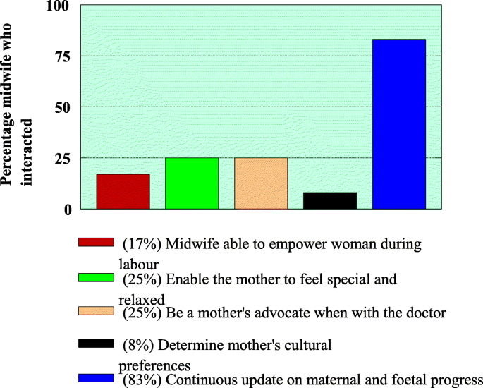 Support provided by midwives to women during labour in a