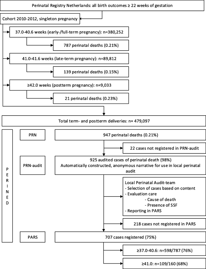 Perinatal death beyond 41 weeks pregnancy: an evaluation of causes