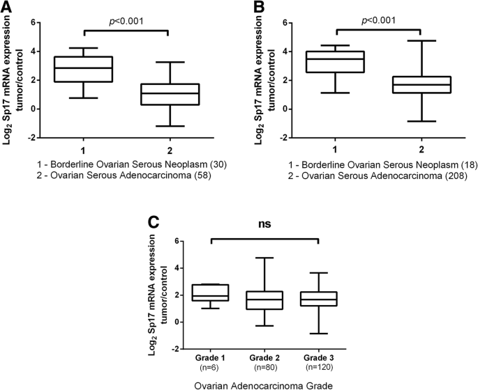 Validity and prognostic significance of sperm protein 17 as a tumor
