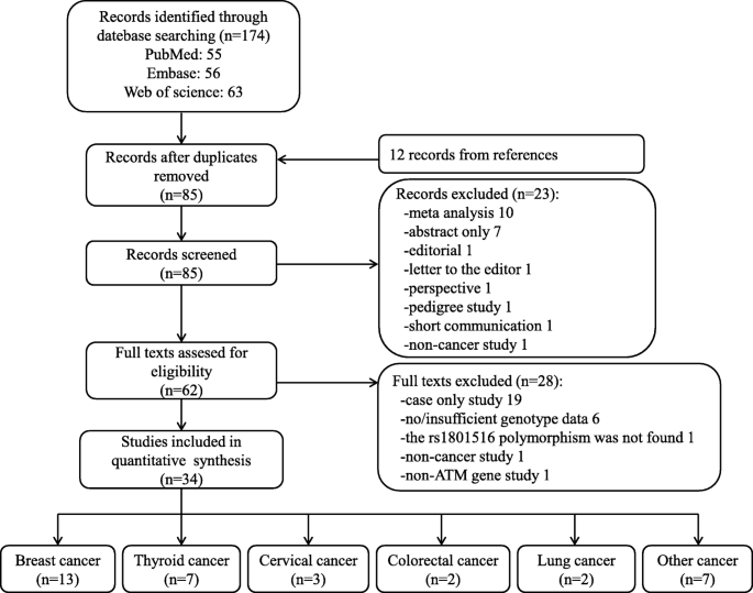Association Between Atm Rs1801516 Polymorphism And Cancer Susceptibility A Meta Analysis Involving 12 879 Cases And 18 054 Controls Bmc Cancer Full Text