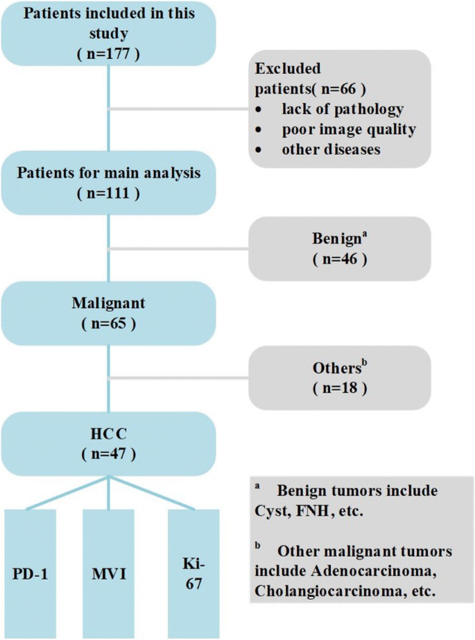 Preoperative diagnosis and prediction of hepatocellular