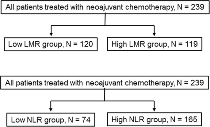 Predictive value of lymphocyte-to-monocyte ratio in the