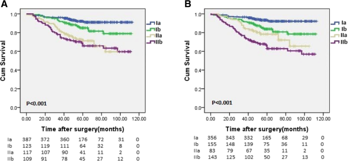 Combination Of Lymphovascular Invasion And The Ajcc Tnm Staging System Improves Prediction Of Prognosis In N0 Stage Gastric Cancer Results From A High Volume Institution Bmc Cancer Full Text