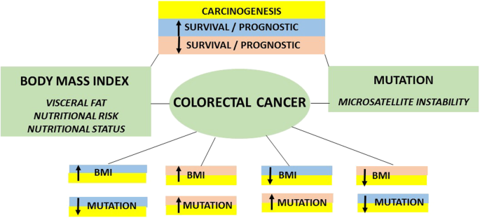 Impact Of Genetic Mutations And Nutritional Status On The Survival Of Patients With Colorectal Cancer Bmc Cancer Full Text