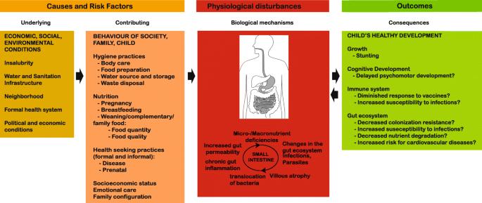 Identifying the etiology and pathophysiology underlying