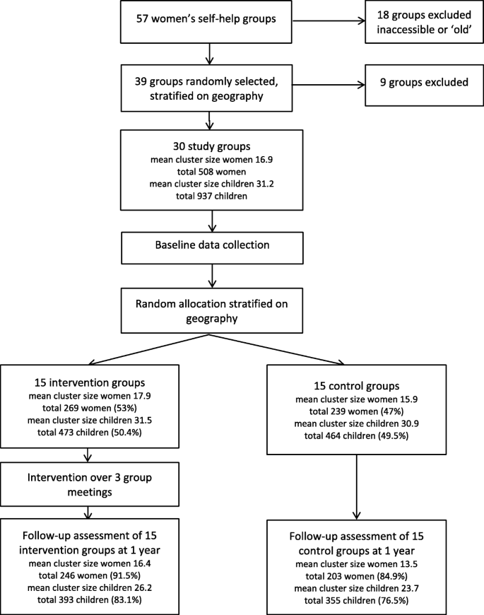 Effect of a participatory intervention in women's self-help