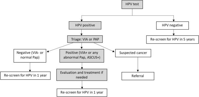hpv human papillomavirus test positive)
