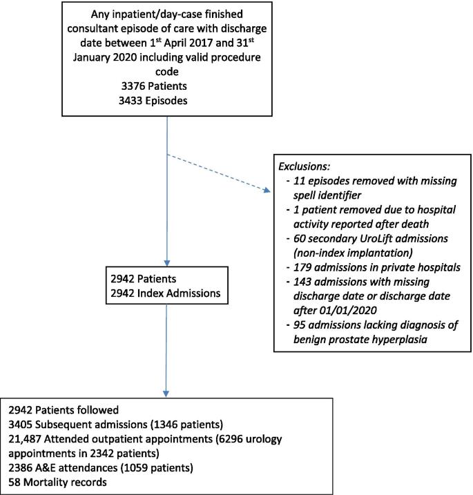 Prostate Hyperplasia kód ICD Vásároljon gyógynövényeket a prosztatitisből
