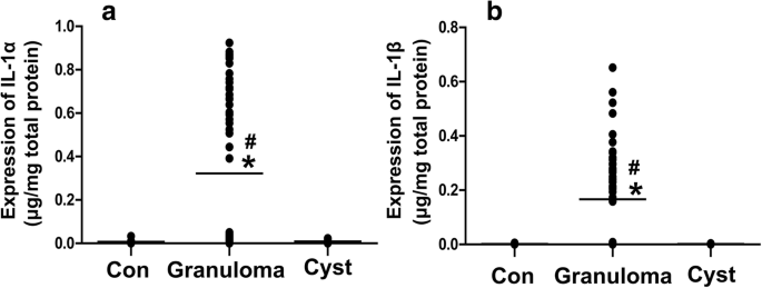 Increased interleukin 1α and interleukin 1β expression is