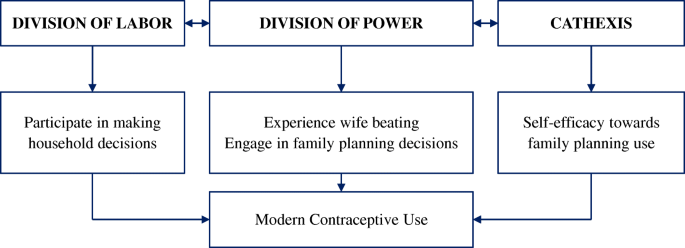 Gender norms and modern contraceptive use in urban Nigeria: a
