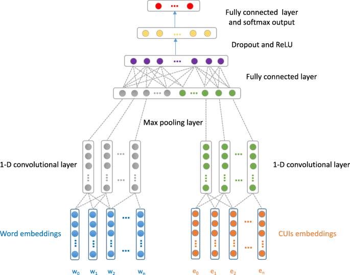 Clinical text classification with rule-based features and knowledge