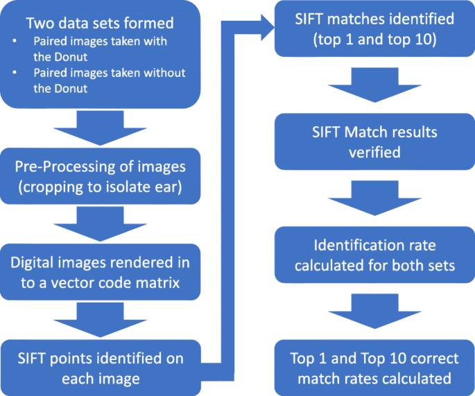 Ear biometrics for patient identification in global health: a field