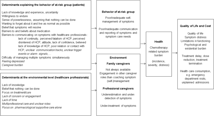 Systematic development of CHEMO-SUPPORT, a nursing