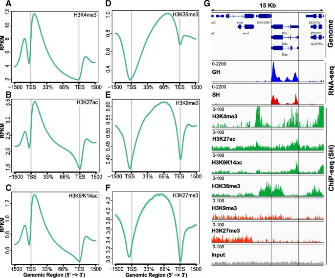 Enabling cell-type-specific behavioral epigenetics in
