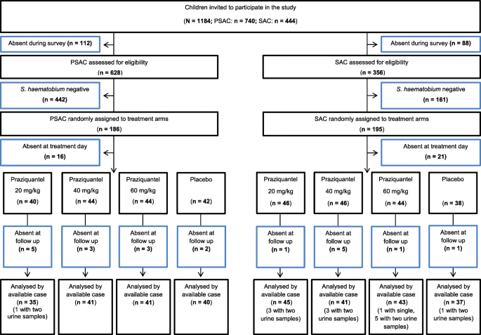 Efficacy and safety of ascending doses of praziquantel against