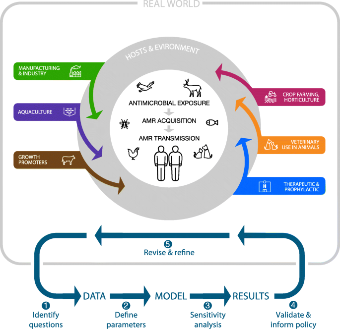 Population-level mathematical modeling of antimicrobial