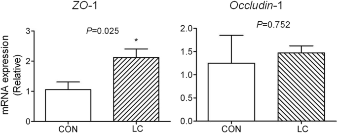 Effects of low-molecular-weight chitosan on the growth