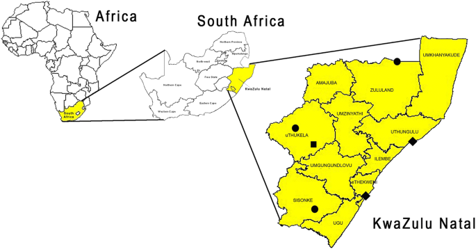 Characteristics of owned dogs in rabies endemic KwaZulu