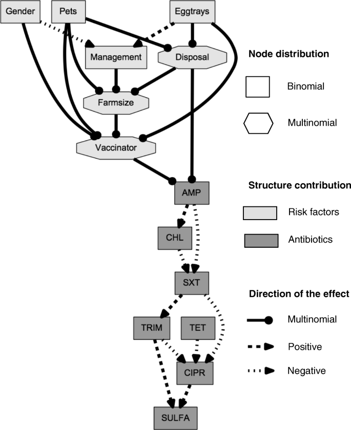 Additive Bayesian networks for antimicrobial resistance and
