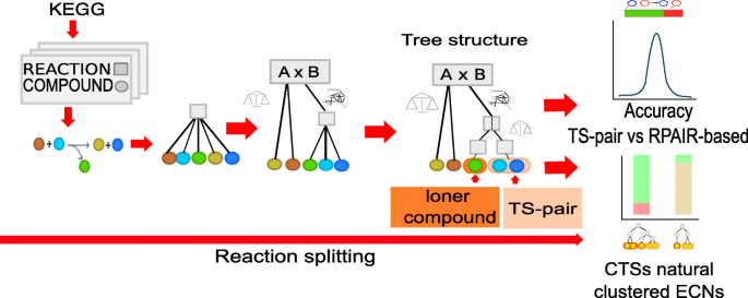 Identification of reaction organization patterns that