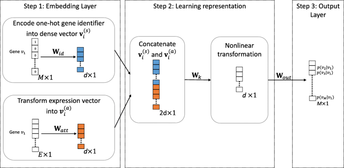 GNE: a deep learning framework for gene network inference by