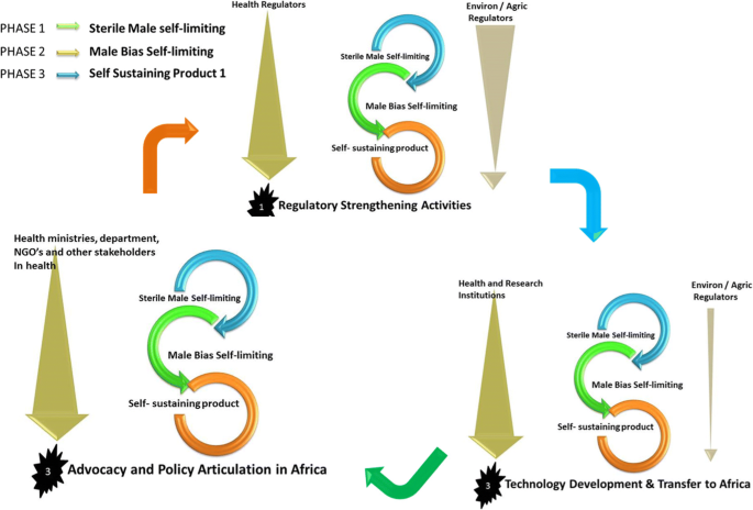Strengthening regulatory capacity for gene drives in Africa