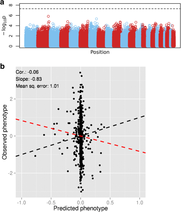 Using penalized regression to predict phenotype from SNP