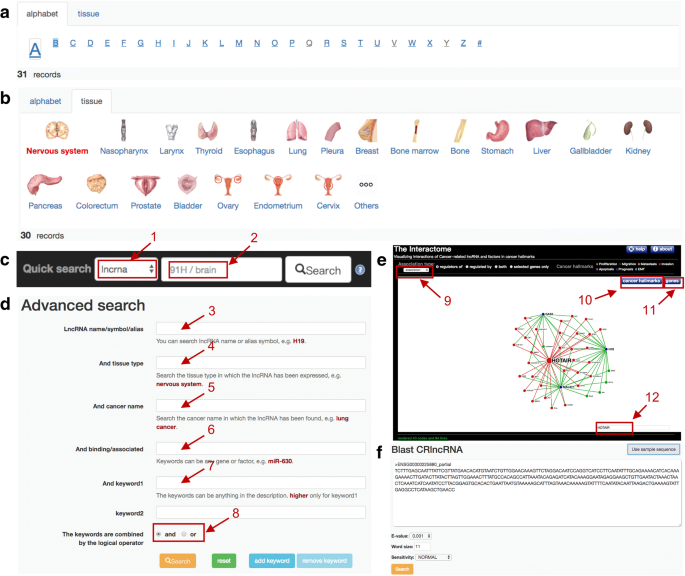 CRlncRNA: a manually curated database of cancer-related long non