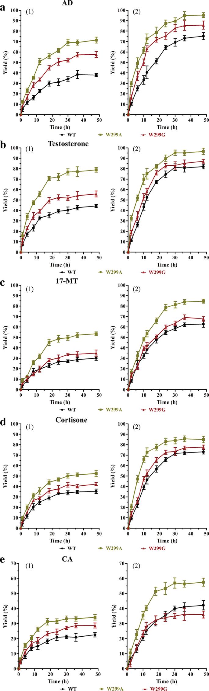 Engineering of 3-ketosteroid-∆ 1 -dehydrogenase based site