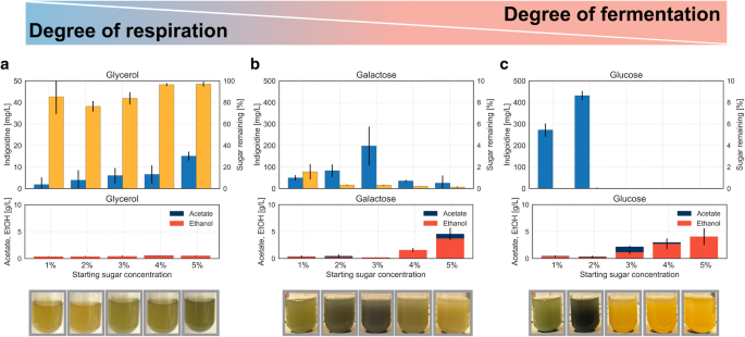 Production efficiency of the bacterial non-ribosomal peptide