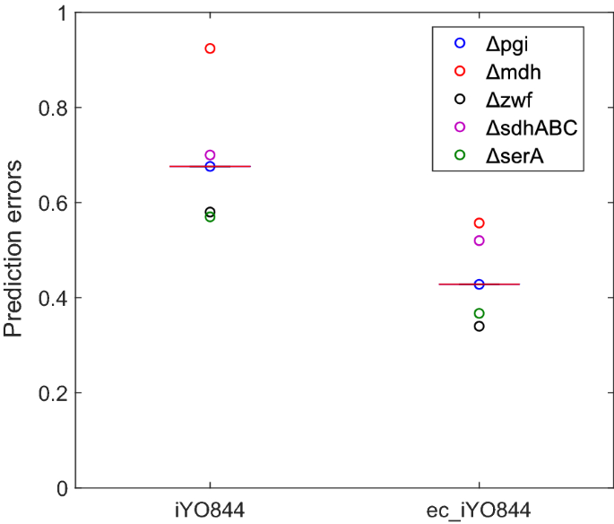 Integration of enzymatic data in Bacillus subtilis genome