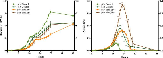 Heterologous phosphoketolase expression redirects flux